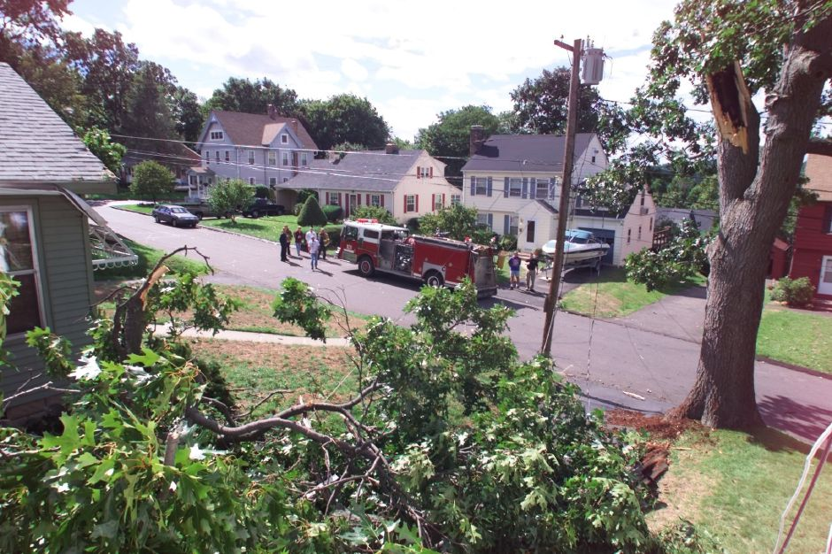 A large tree branch fell between homes at 216 and 222 Columbus Avenue, grazing both homes and downing power lines Sept. 17, 1999