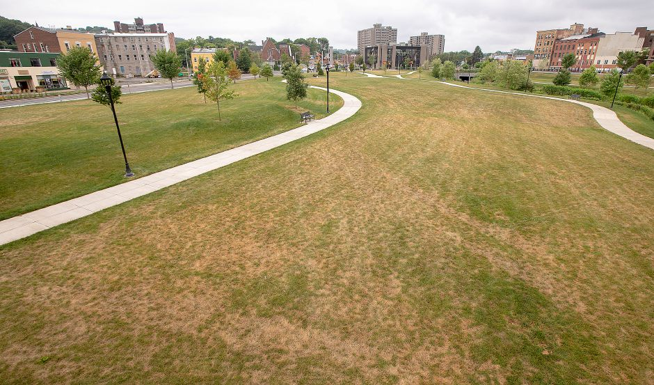 A problem with the irrigation system has led to grasses browning on the Meriden Green, Thurs., July 18, 2019. Dave Zajac, Record-Journal