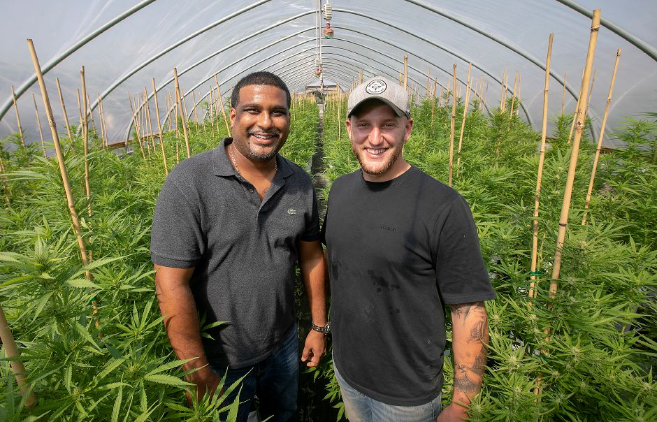 Randy Persaud, left, and Dan Laviana are the co-owners of Sunny Border Nurseries Inc. in Berlin. The business is about three weeks away from harvesting its first hemp crop.Dave Zajac, Record-Journal
