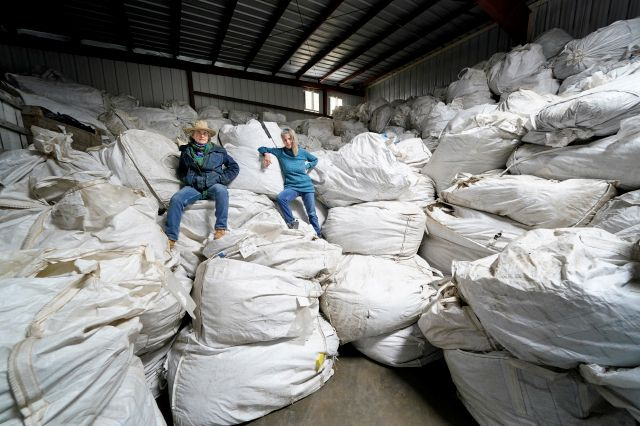 Gail Hepworth, right, and Amy Hepworth, sisters and co-owners of Hepworth Farms, pose for a picture on bags full of hemp plants at Hepworth Farms in Milton, N.Y., Monday, April 12, 2021. Farmers dealing with depressed prices for plants that produce CBD extract are eager to take part in a statewide marijuana market expected to generate billions of dollars a year once retail sales start. They already know how to grow and process cannabis plants, since hemp is essentially the same plant...