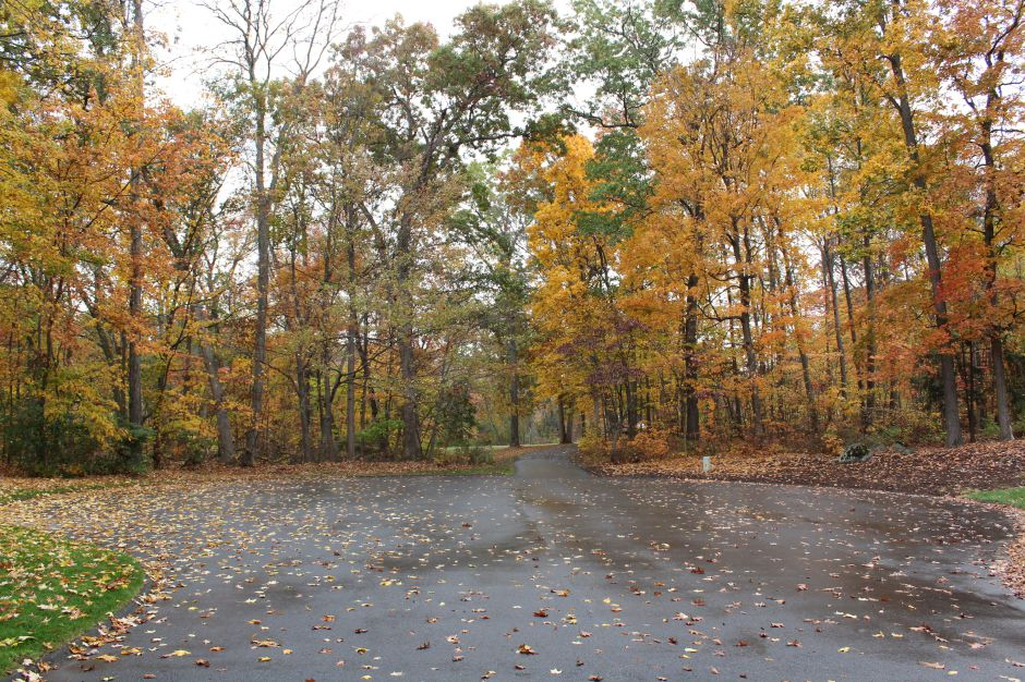 A paved driveway provides access to around 10 acres at the end of Sherry Drive, which the town of Southington is considering purchasing. The property would connect with existing town owned open space. | Eric Cotton, Record-Journal