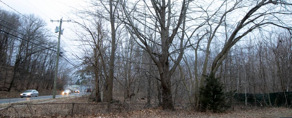 Motorists on North Main Street pass the former Beaton & Corbin factory site hidden by overgrowth in Southington, Tues., Jan. 14, 2020. A local developer has proposed a commercial plaza for the site. Dave Zajac, Record-Journal