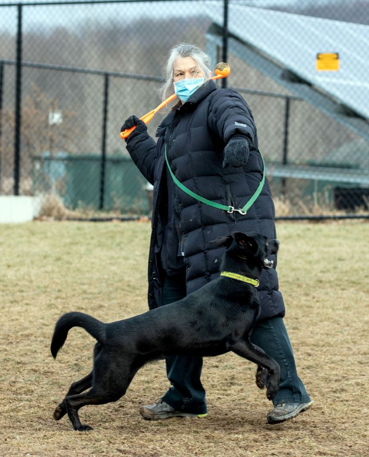 Emma Smith of Cheshire throws the ball for her dog, Isabelle, as they play fetch at the Cheshire Dog Park on Monday, January 11, 2021. Aaron Flaum, Record-Journal.com