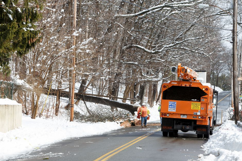Crews clean up a fallen tree that took down power lines on Masonic Ave in Wallingford Thursday during a winter storm clean-up March 8, 2018 | Justin Weekes / Special to the Record-Journal