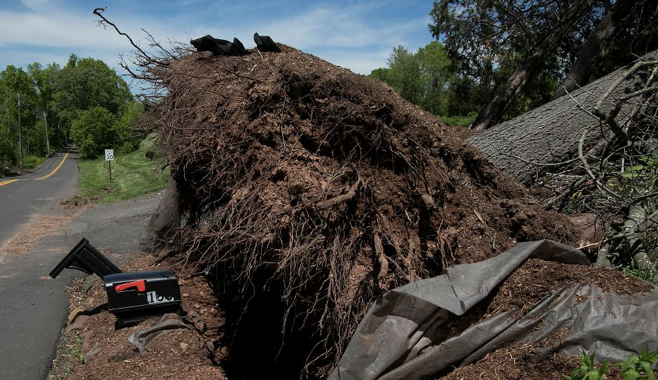A mailbox under a fallen oak tree at a Northford Road residence in Wallingford, Monday, May 21, 2018. Last Tuesday