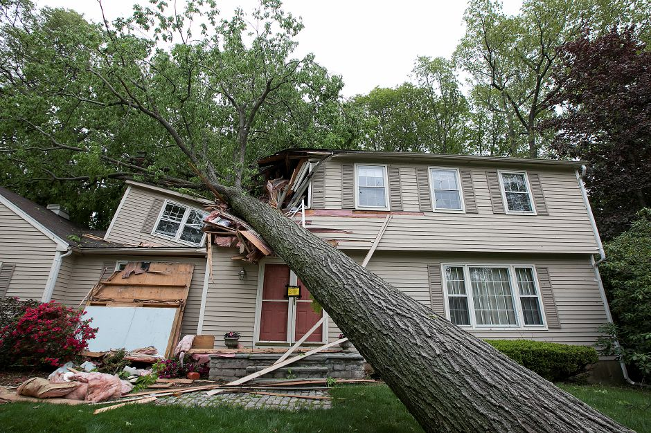 A fallen tree heavily damaged this home at 120 Bellamy Rd. during Tuesday