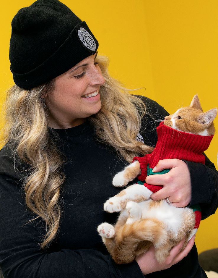 "Feline ""Juice"" wears a turtleneck while held by Katie Ehlers, animal control officer, at the Municipal Animal Shelter in Wallingford, Fri., Dec. 13, 2019. Shelter staff have been posting profiles and photos of each animal on Facebook, along with what they want for Christmas. The public is invited to visit the shelter, 5 Pent Road, from 11 a.m. to 2 p.m. Dec. 24 to spend time with the animals and drop off gifts. Dave Zajac, Record-Journal"
