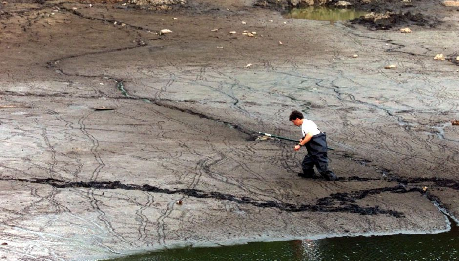 RJ file photo - Rich Badon wades through mud at the pond at New Dam off Birdsey Ave. Mon. afternoon, June 28, 1999. He was trying to rescue some of the many turtles left in the receding pond during construction work for a new dam.
