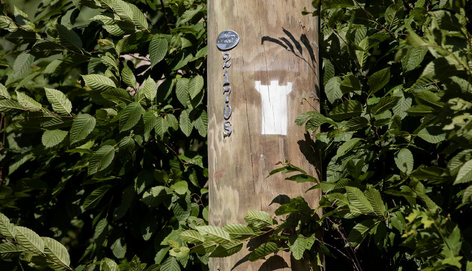 A new trail marker painted on a pole along Reservoir Avenue which leads to Castle Craig in Meriden