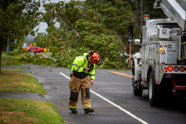 A Fire Department official guards himself against the gusting winds of Tropical Storm Isaias, at Farmington Ave where a tree fell across wires and shut down the street for blocks in Plainville, Connecticut. (Mark Mirko/Hartford Courant via AP)