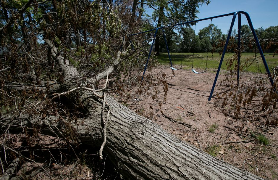 A large fallen tree rests next to a swingset at Mischelle & Kristine Pire Memorial Park on Birch Drive in Wallingford, Tuesday, June 12, 2018. Teams from the Federal Emergency Management Agency visited Wallingford Tuesday morning to survey the damage from the May 15 storm. Dave Zajac, Record-Journal