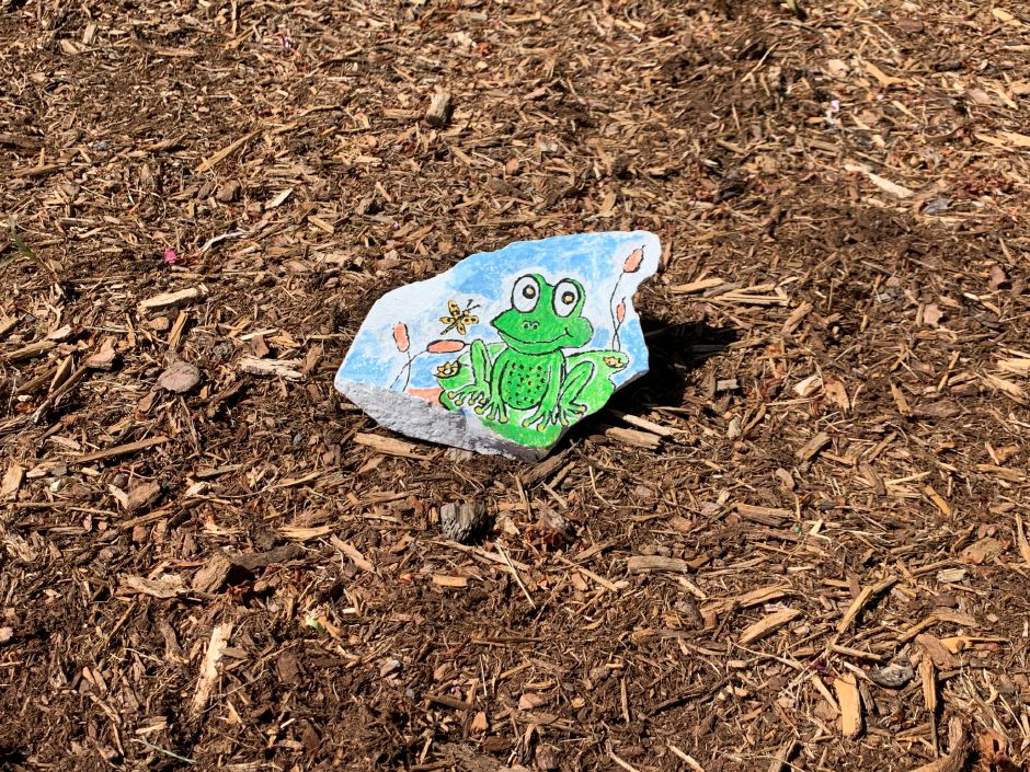 Beckley Farms resident Patricia Manoni placed painted rocks around her neighborhood over the past few weeks in order to spread some goodwill to neighbors. Rocks include pictures of frogs, flowers, birds, and more. Photos by Everett Bishop, The Citizen
