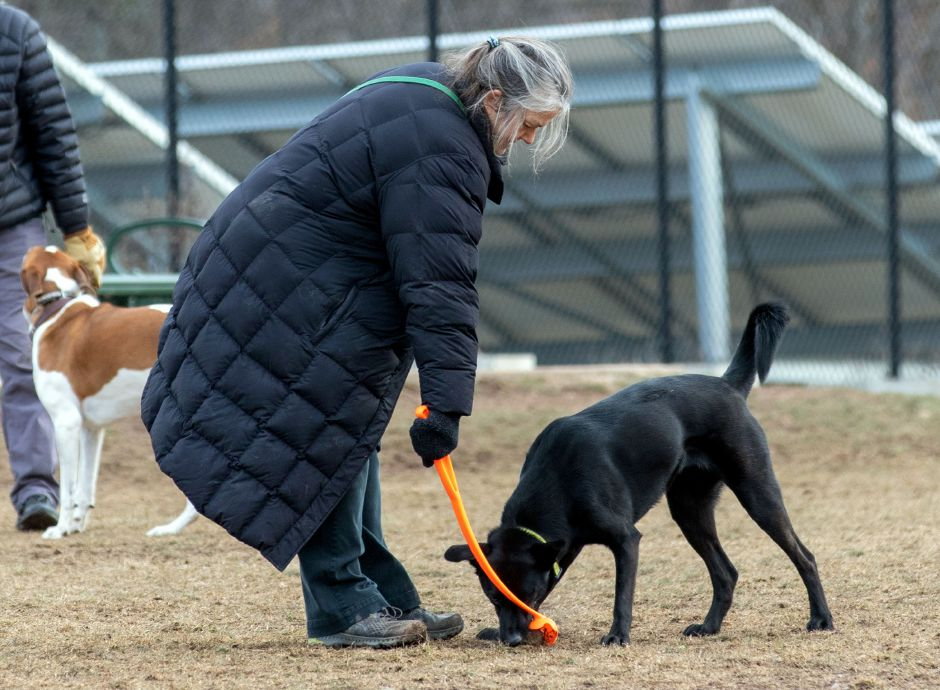 Emma Smith of Cheshire gets the ball from her dog, Isabelle, as they play fetch at the Cheshire Dog Park on Monday, January 11, 2021. Aaron Flaum, Record-Journal.com