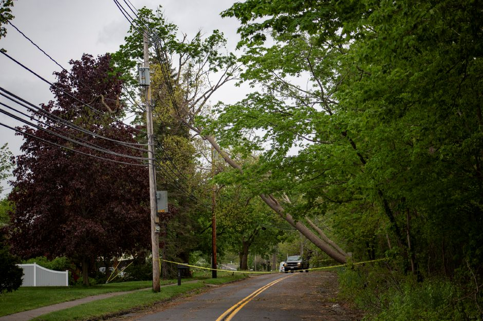 Fallen trees lean against power lines on Northfield Road in Wallingford May 16, 2018. | Richie Rathsack, Record-Journal