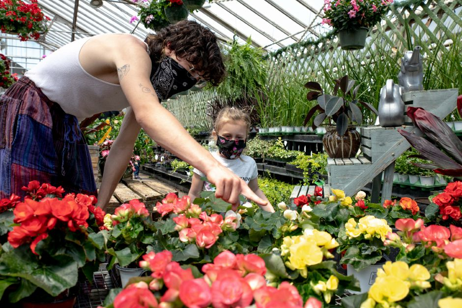 Derek Biehn and Madison Sill, 3, browse the flower selection at Tower Farms of Cheshire on Sunday. Nurseries saw a spike in activity as warm weather brought people out after weeks of being urged to stay home. Photos by Devin Leith-Yessian, Record-Journal