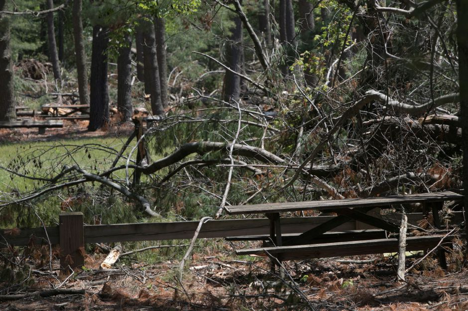 Tree limbs fallen on picnic tables at Wharton Brook State Park, Tuesday, June 12, 2018. Teams from the Federal Emergency Management Agency visited Wallingford Tuesday morning to survey the damage from the May 15 storm. Dave Zajac, Record-Journal