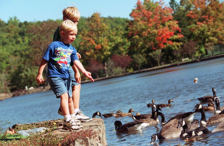 Eric Soloske (4) and his brother David(9) of Meriden feed the ducks at Hubbard Park in Meriden Oct. 11, 1999