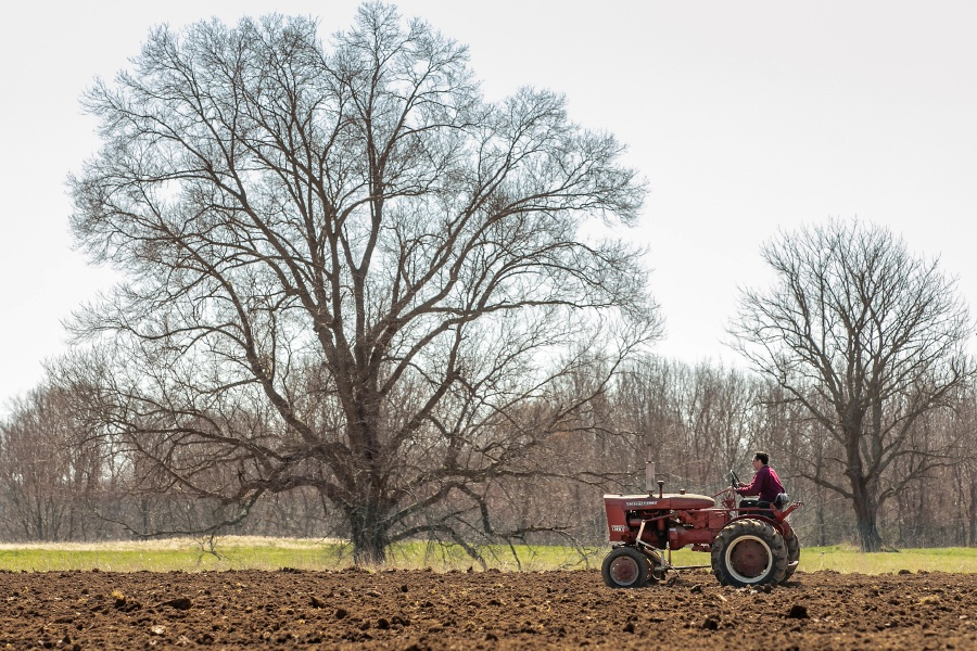 "Joe DeFrancesco III prepares a potato field for planting at DeFrancesco Farms in Northford, Thurs., Mar. 26, 2020. Businesses across the state are worried about the impact of the coronavirus, even the ones considered ""essential"" like farmers' markets and garden centers. Dave Zajac, Record-Journal"